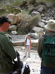 Boyd Deep Canyon (9317)