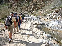 Boyd Deep Canyon (9318)