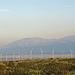 Windmills (0557)