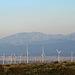 Windmills (0558)