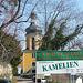 Kamelienblütenschau im Barockschloß Zuschendorf - Pirna