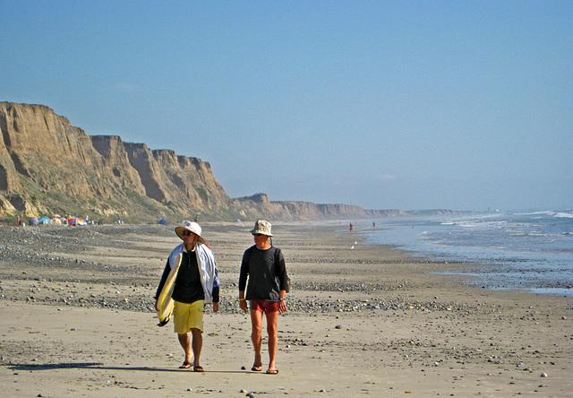 San Onofre Beach (1339)