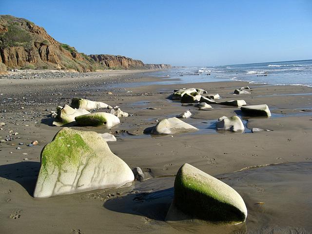 San Onofre Beach (1342)