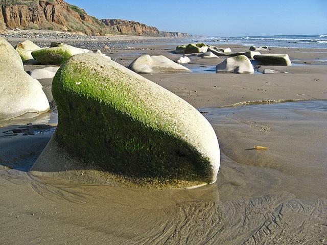 San Onofre Beach (1343)