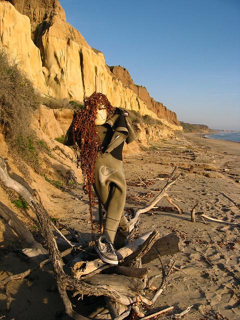 San Onofre Beach Junk Art (1372)