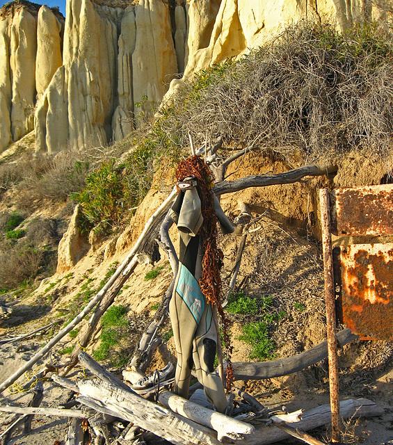 San Onofre Beach Trash Art (1371)