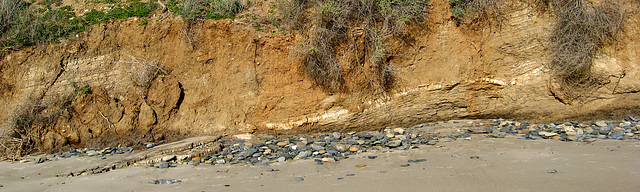 San Onofre Geology (1349)