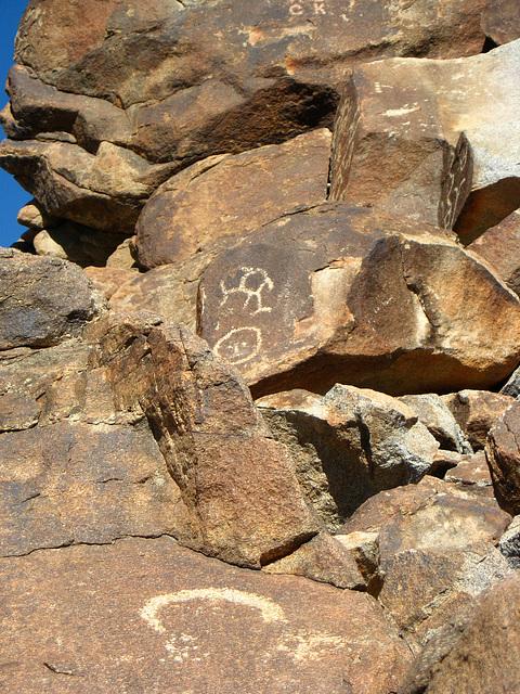 Corn Spring Petroglyph (1233)