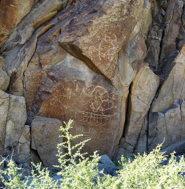 Corn Spring Petroglyph (1240)