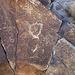 Corn Spring Petroglyph (1243)