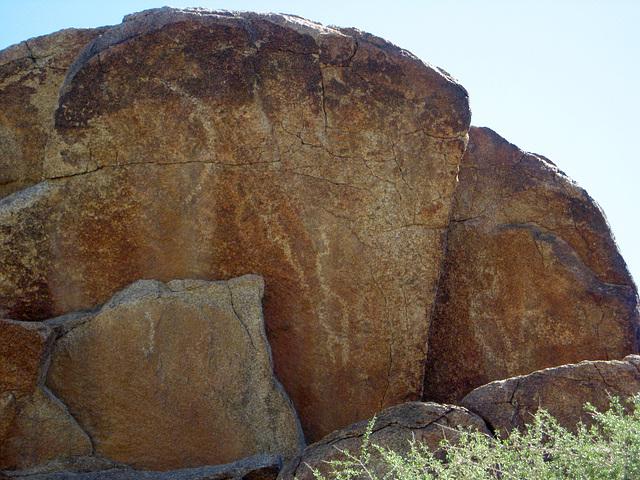 Corn Spring Petroglyph (1247)