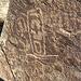 Corn Spring Petroglyph (1250)