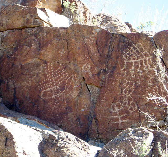 Corn Spring Petroglyph (1254)