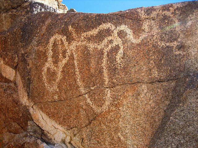 Corn Spring Petroglyph (9043)