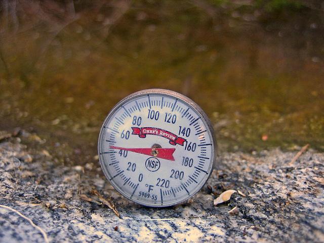 48 degrees F (9094)