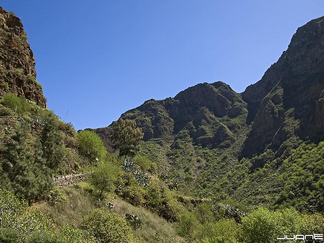 Barranco de Guayadeque (Gran Canaria)