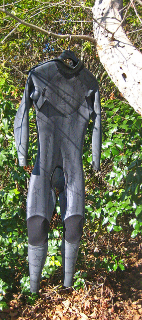 Ky's Wetsuit (9242)