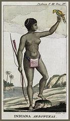 Indienne Arawak, par John Gabriel Stedman