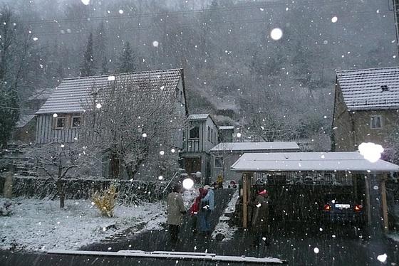 Wetterkapriolen März - 2008