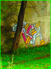 Graffitis et rapides -  Graf and rapids - Dans ma ville - Hometown -  October 12th 2008.