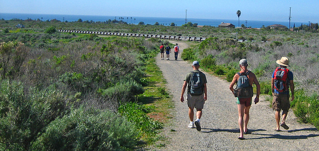 Trail to San Onofre (9162)