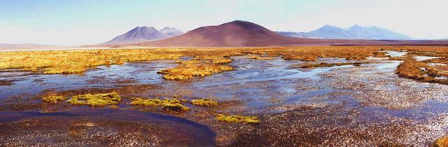 Altiplano panoramique