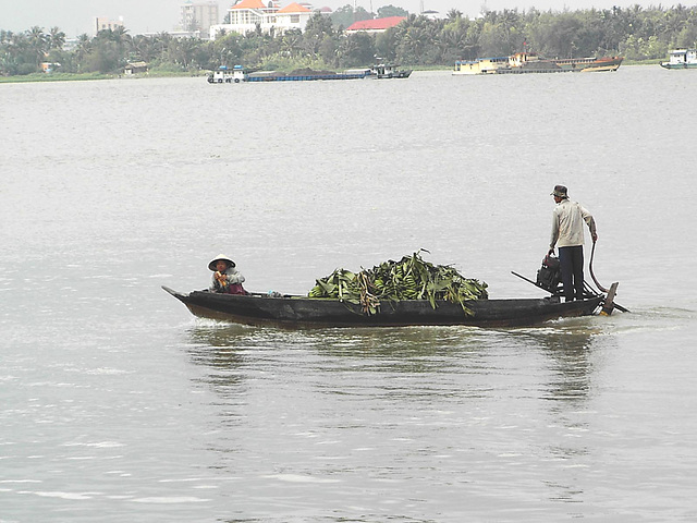 Vietnam et Mékong