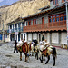 Jomsom the starting point of the Mustang treck