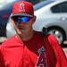 Anaheim Angels Player (1015)