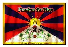 * Flagge zeigen für Tibet *
