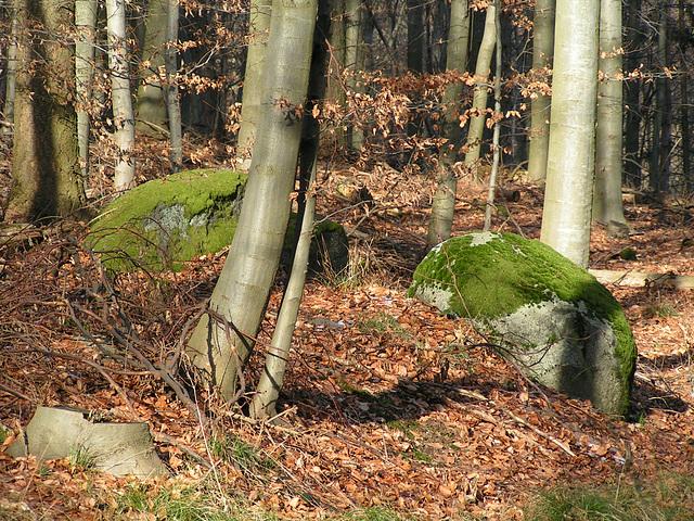 Juhöhe, Odenwald