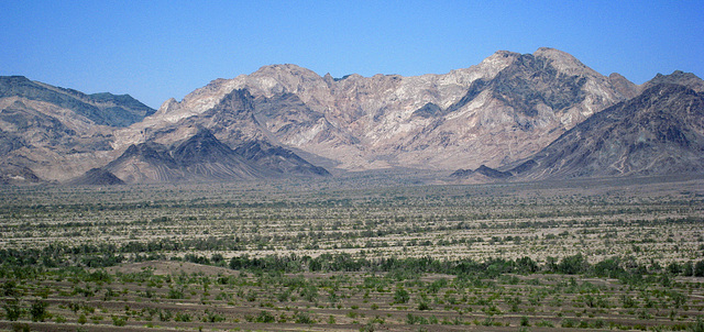 Hillside Trails (0431)