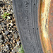 Ballarat Tire (3177)