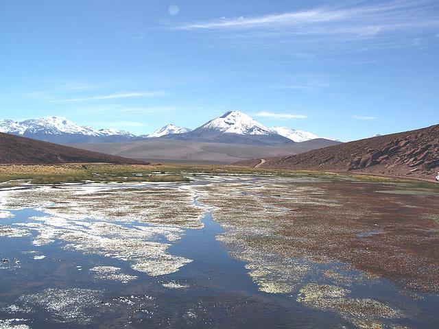 Altiplano 03