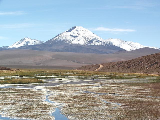Altiplano 04