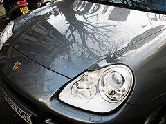 Porsche und Baum