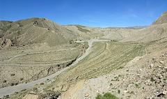 Old Quarry (7145)