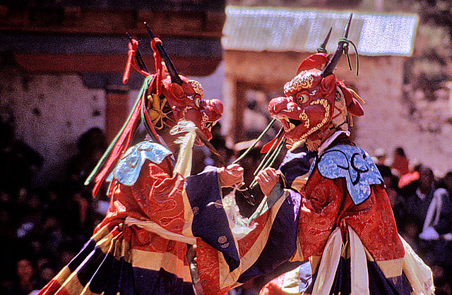 Sha-Zami, The dance of the deers