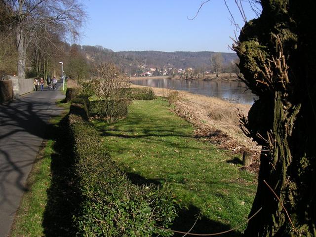 Kleiner Spaziergang an der Elbe