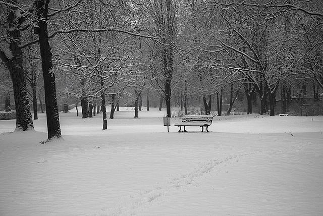 Schnee / snow