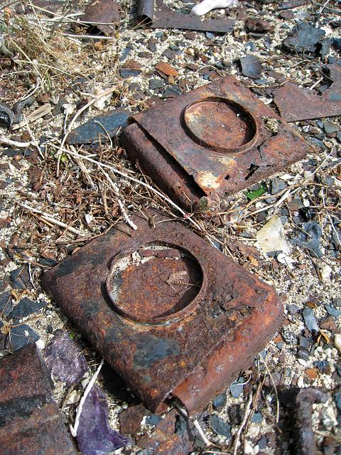 Rust (0156)