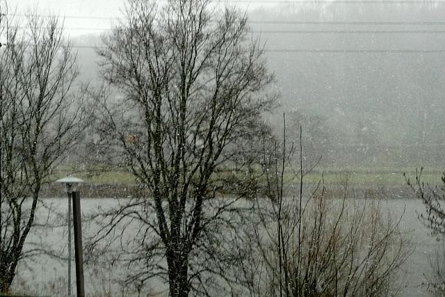 Schnee  am 24. März 2009