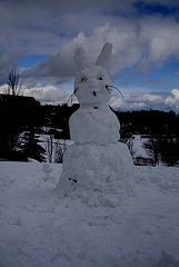 Easter bunny - Easter in Saxony