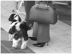 Dame blonde du bel âge en bottes de Dominatrice avec son toutou - Blonde mature in Dominatrix Boots with her dog- 19-10-2008 -  Aéroport de Bruxelles - En noir et blanc / Black & white