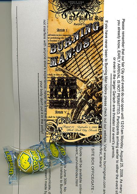 Burning Man Ticket 2008
