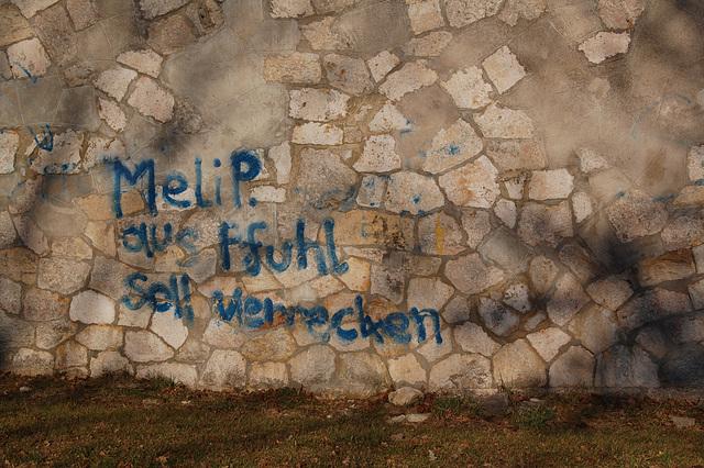 Meli P. aus Pfuhl...
