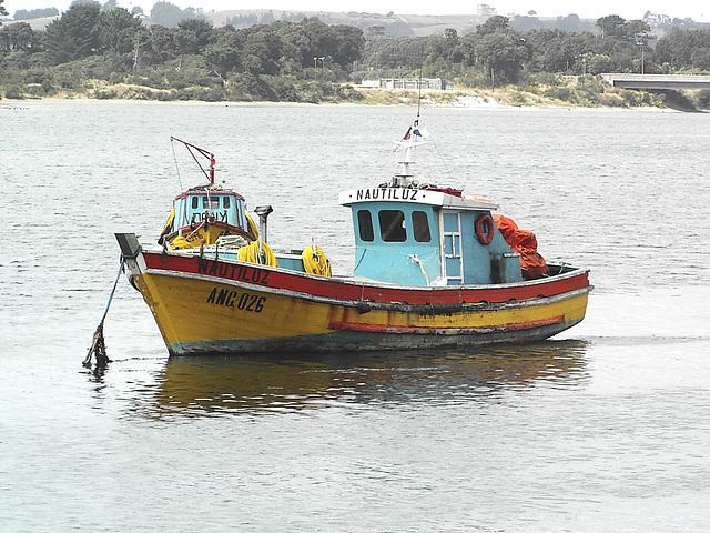 Chiloé, le Nautilus