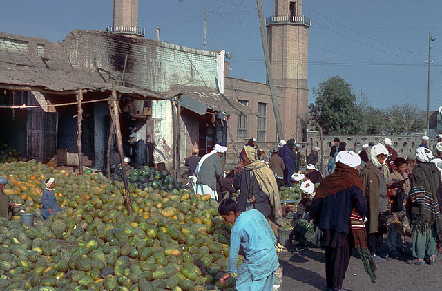 Watermelons the most common fruit in Afghanistan ...