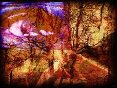 Si nous n'entendions plus ......ce que le vent nous crie................ Les hommes auraient perdu......... la source de leur vie