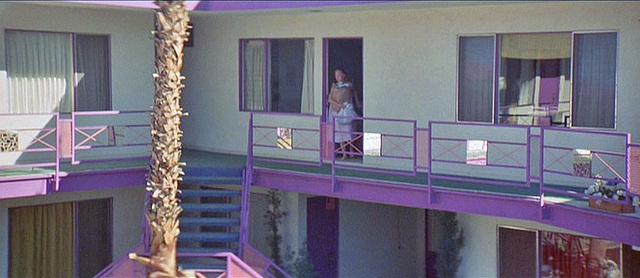 3 Women - Purple Sage Apartments (72)
